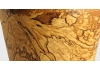 Il legno Spalted