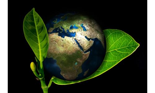 Ecosostenibilità e Artigianalità