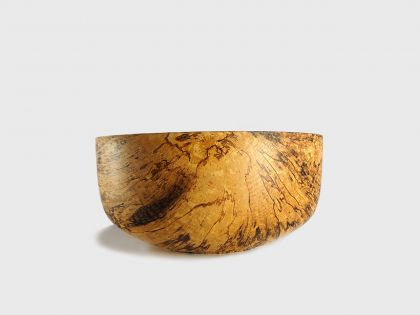 Coppa betulla spalted BS7