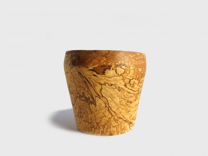 Coppa betulla spalted BS3